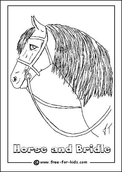 Preview of Horse and Bridle Colouring Sheet