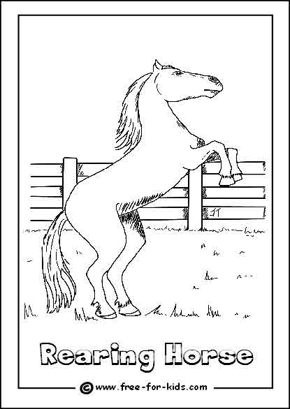 Preview of Rearing Horse Colouring Sheet