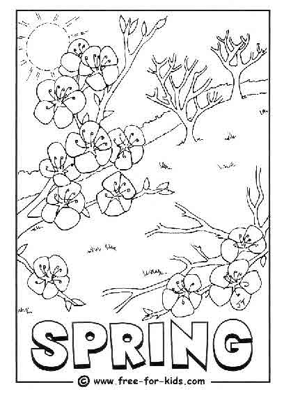 - Spring Colouring Pages - Www.free-for-kids.com
