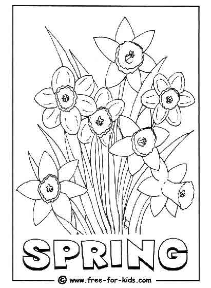 Preview of Spring Daffodils Colouring Page