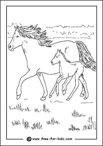 Preview of Horse and Foal Colouring Page
