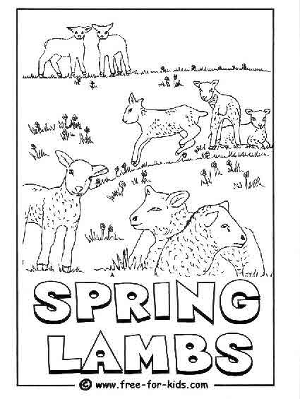 Preview of Spring Lambs Colouring Page