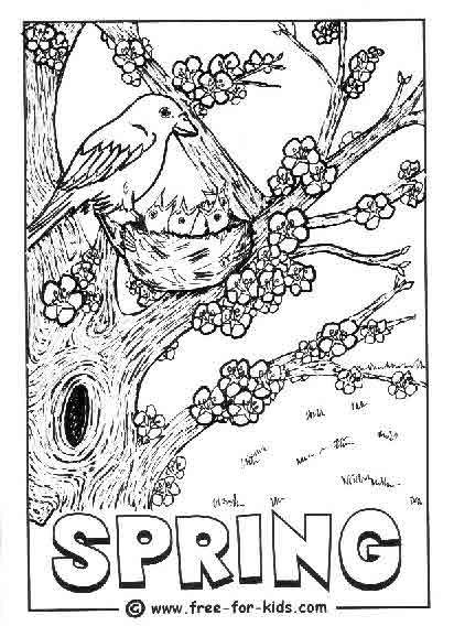 Preview of Spring Chicks in Nest Colouring Page