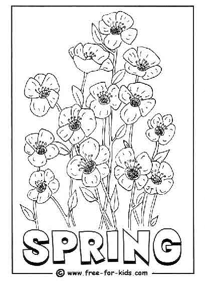 Preview of Spring Flowers Colouring Page