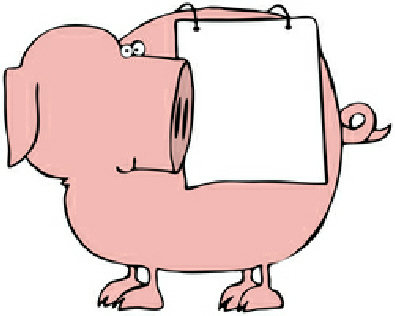 image of a pig waiting for a name