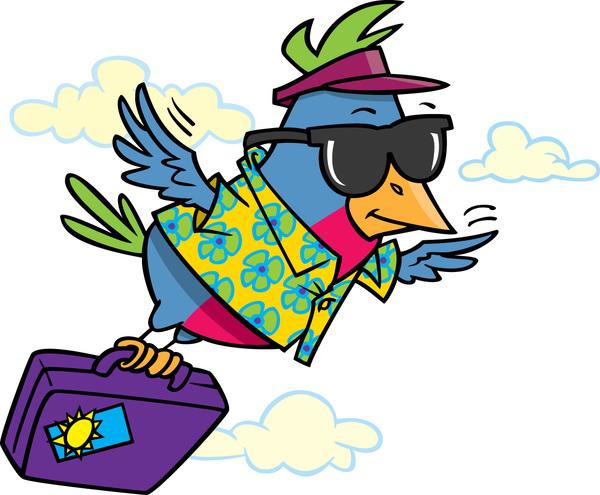 Zeno Paradox Bird Travelling
