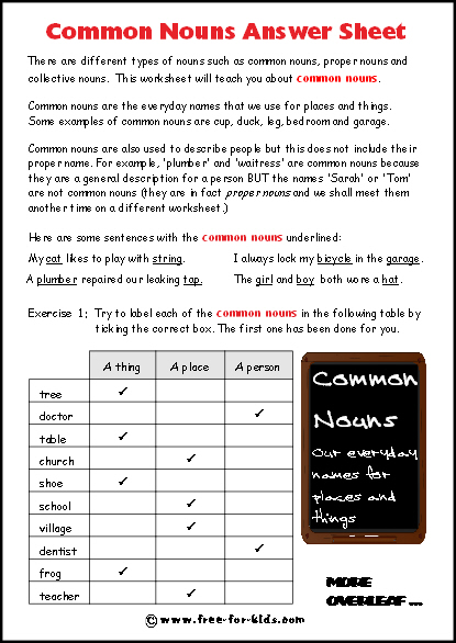 Preview of Common Nouns Worksheet Answer Sheet