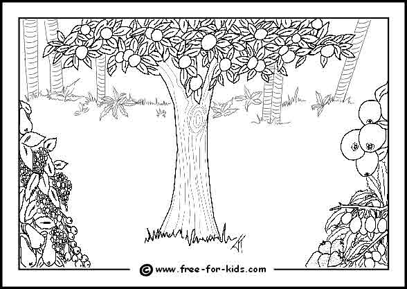 free printable colouring page of The Tree of Knowledge in the Garden of Eden