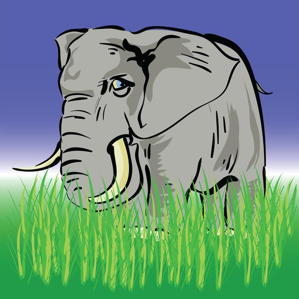 elephant in long grass
