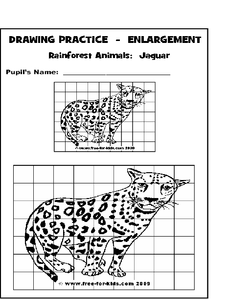 Preview of Rainforest Animal Drawing Practice Page - Jaguar