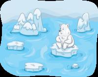 Image of a sad polar bear floating on melting ice