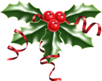 image of a sprig of holly with red berries